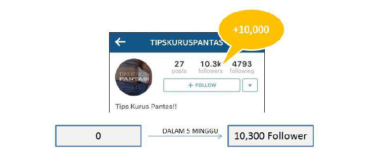 tips_instagram